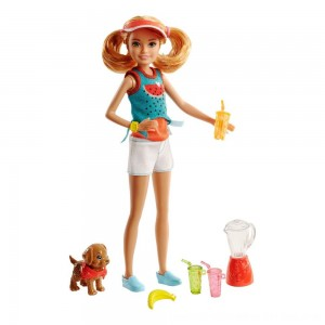 Black Friday 2020 - Barbie Sisters Stacie Doll and Smoothie Accessory Set
