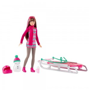 Black Friday 2020 - Barbie Sisters' Sledding Fun and Doll Playset