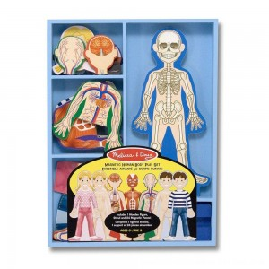 Black Friday 2020 - Melissa & Doug Magnetic Human Body Anatomy Play Set and Storage Tray - 24pc